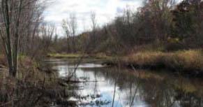 Image of creek